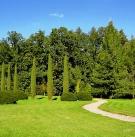 Arboretum w Wirtach – w krainie roślinnej egzotykiThe Arboretum in WirtyArboretum in Wirty – in der exotischen Natur